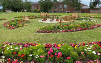 Mental health and community garden in Wales